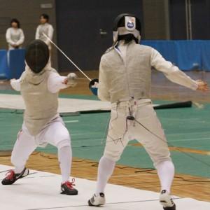 fencing(s)